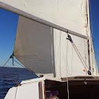 Catalina 22 Winter Sunday Sailing