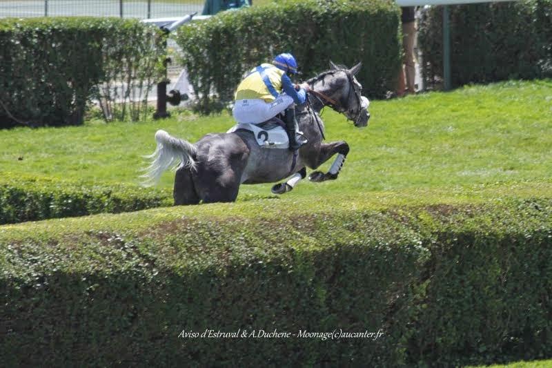 Photos Auteuil 22-05-2015 IMG_0587