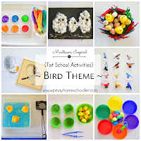 Bird Themed Activities for 28 Month Old Toddlers