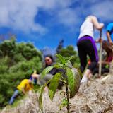 Hawaii 2013 - Best Story-Telling Photos - IMGP8073.JPG