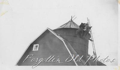 men on top of barn Verndale ant