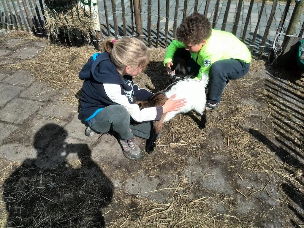 Welpen - Kinderboerderij & Crossbaan - IMG_20150530_102641.jpg