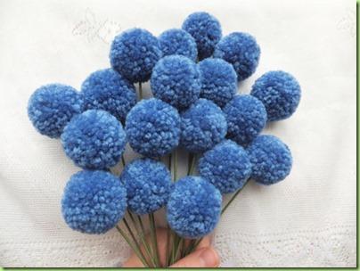 blue pom2