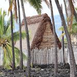 Hawaii pics 39.jpg