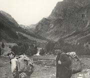 Алеша, А.Е. Кошванец, Кавказ - 78