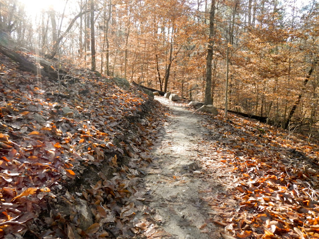 Umstead Company Mill Trail has a new section