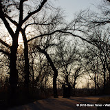 01-05-13 Arbor Hills Nature Preserve - IMGP3978.JPG