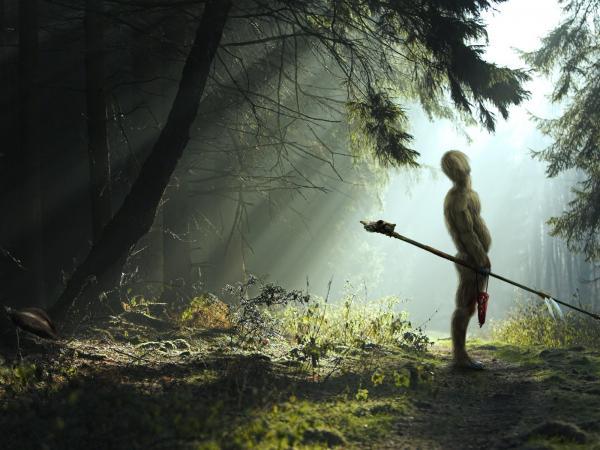 Dark Forest In Light, Magical Landscapes 2