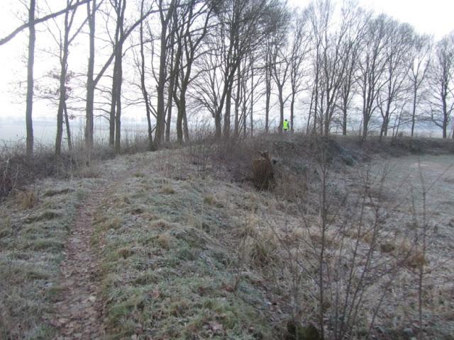 """100/110Km """"De Bossche Hondert"""": 27-28/01/2012  De%252520Bossche%252520100%252520055"""