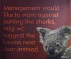Die Aussies haben schon Humor...
