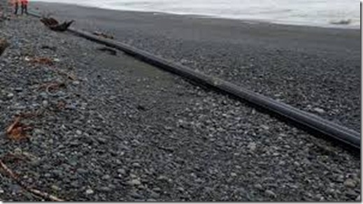 mysterious tube on New Zealand beach