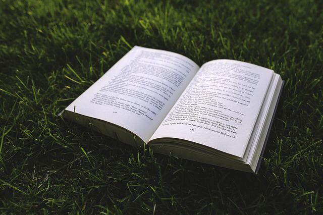 libro-leer-verano-propósitos-vacaciones