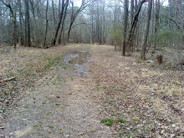 Richland Creek Trail along Wade Ave.
