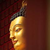 Monthly Molam prayer for Tibet at Sakya Gompa - May 5th 2012 - 12-cc0046%2BA%2BPrayers%2B72.jpg