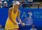 Caroline Wozniacki - AEGON International 2015 -DSC_5907.jpg