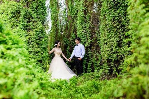 Làng nổi Tân Lập lung linh trong ảnh cưới 2