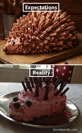 funny-cake-fails-expectations-reality-15-58db95b03556f__605