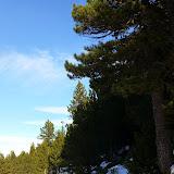 La Cerdanya 3 i 4 de gener (14).jpg