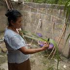 Preparando la hoja de cañaflecha