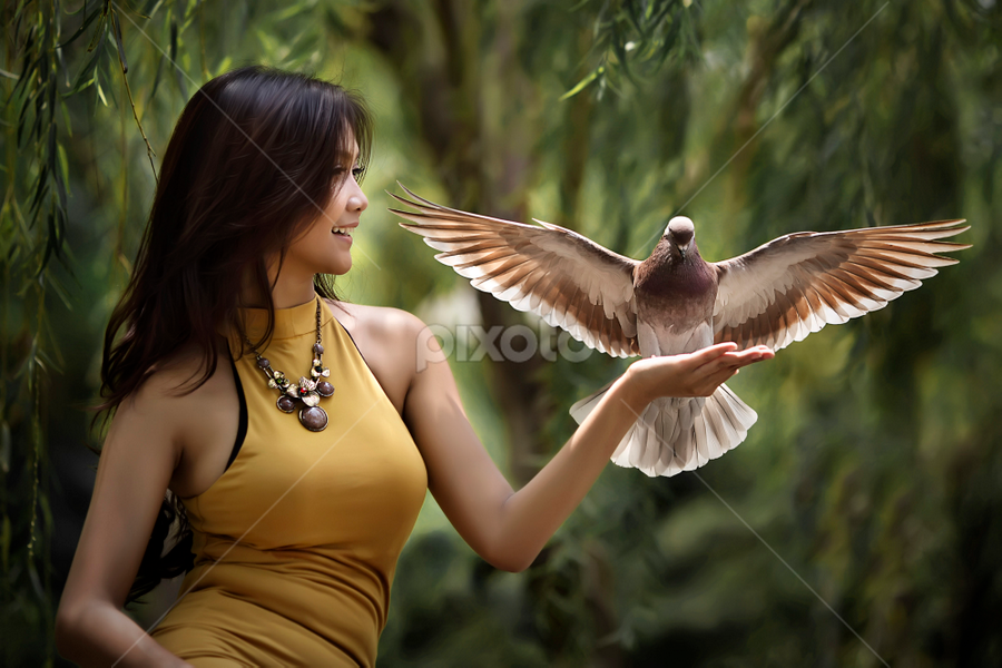 come here birdie by Ivan Lee - People Fashion ( pigeon, canon, bird, model, girl, beauty,  )