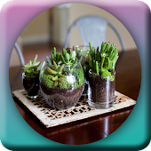Awesome DIY Terrarium Design Android APK Download Free By Kang Indra