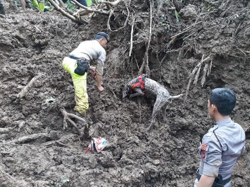 7 Korban Longsor Gowa Ditemukan Tim Anjing Pelacak Polda Sulsel