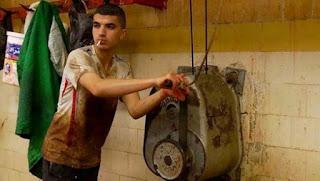 Deux films algériens en compétition au 31e Festival du film de Namur (Belgique)
