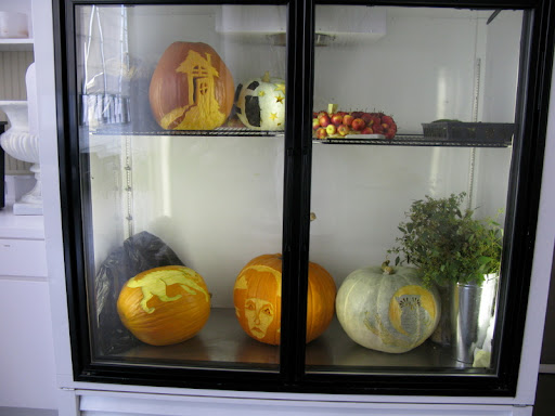 We store the pumpkins in this large fridge overnight, so they stay fresh for the shoot in the morning.