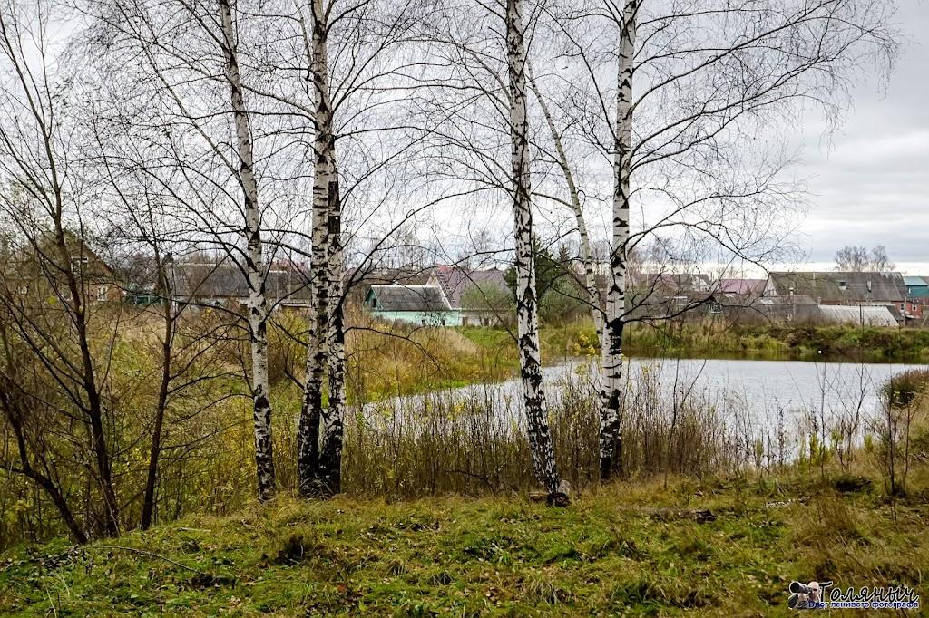 Вид на деревню Желтиково