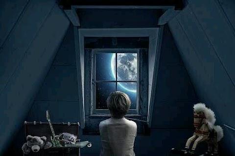 Nocturnal Boy