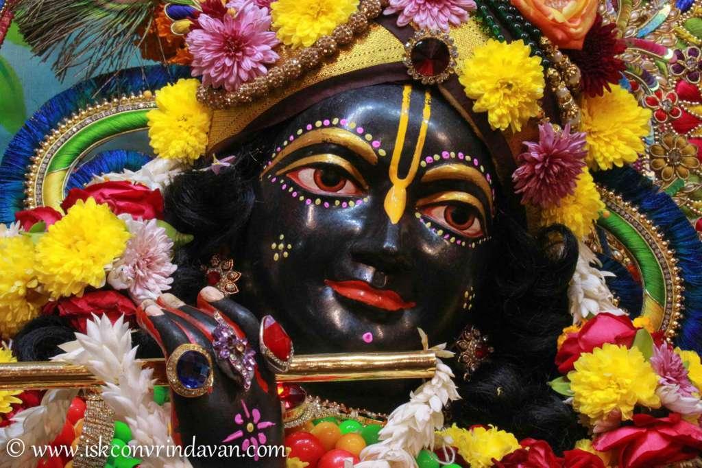 ISKCON Vrindavan Sringar Deity Darshan 18 Dec 2015 (17)
