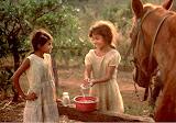 """Little Friends, El Salvador"" by Robin Prentice -- 1st place B General"