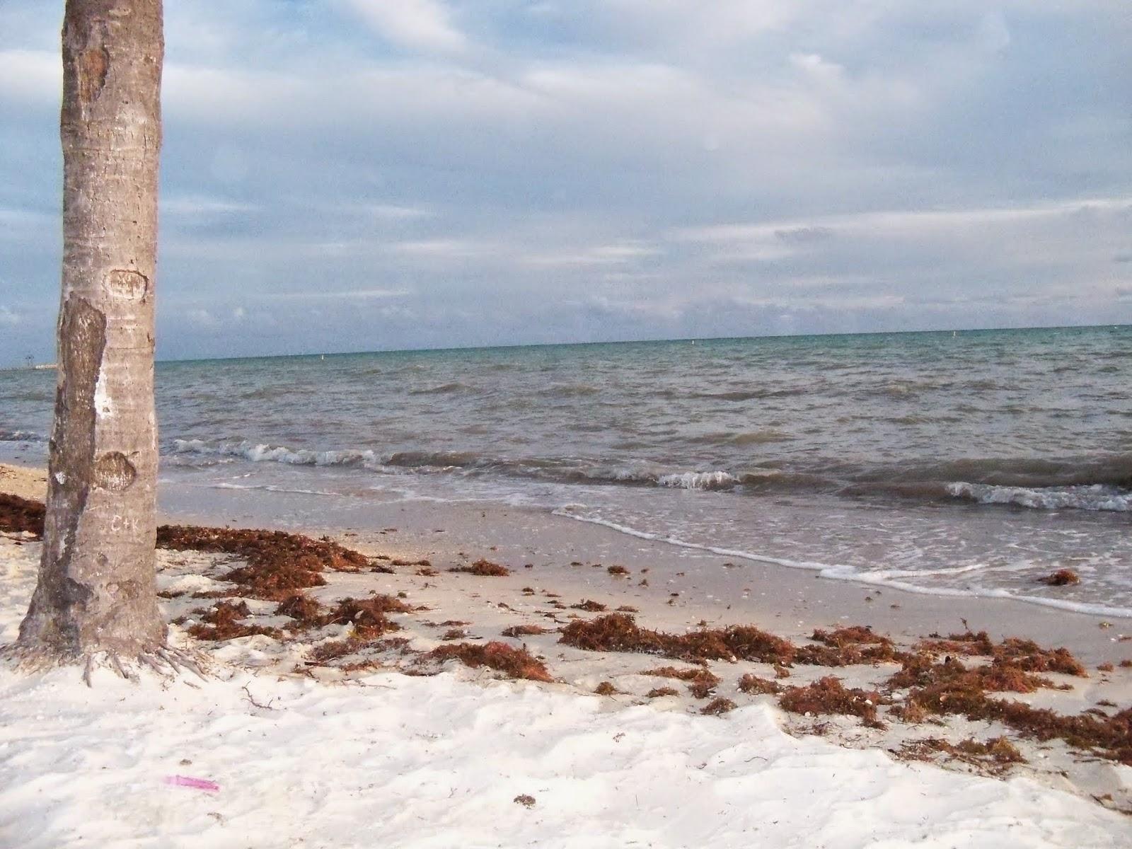 Key West Vacation - 116_5548.JPG
