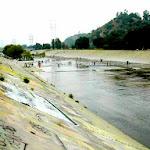 rivercleanup200601.jpg