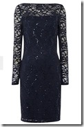 Long sleeved sequined stretch lace dress