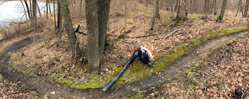 Clearing singletrack on Twin Lakes loop. April 20th, 2017.