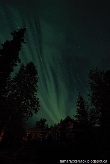 [aurora6%5B6%5D]