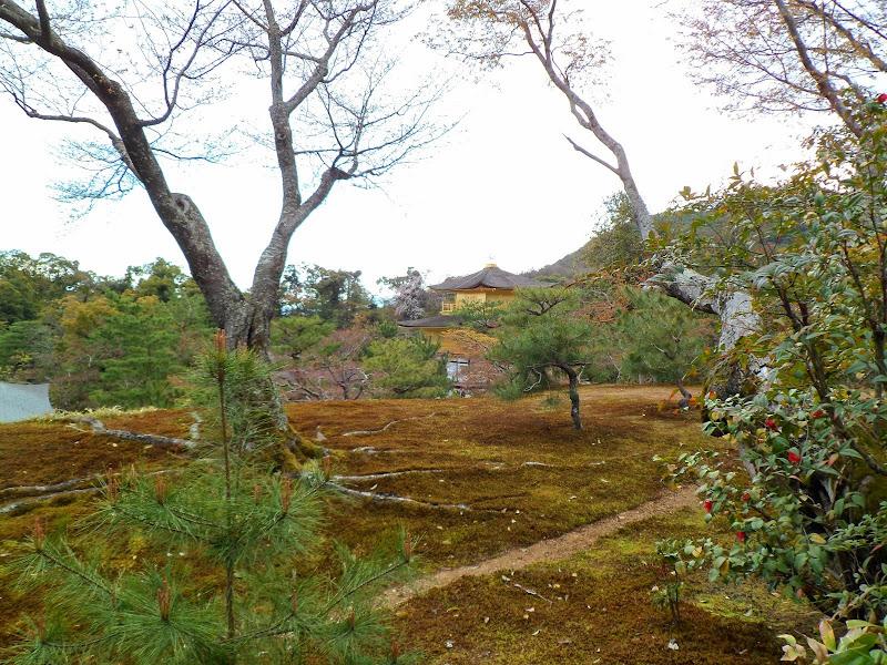 2014 Japan - Dag 8 - tom-SAM_0546-0051.JPG