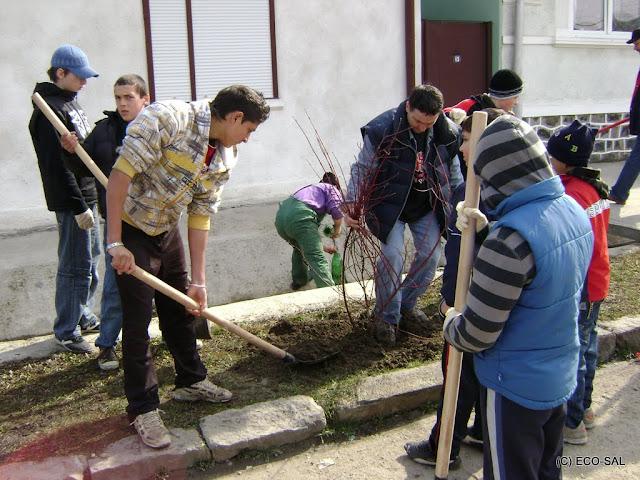Curăţenia de primăvară 2009 - DSC01147.JPG