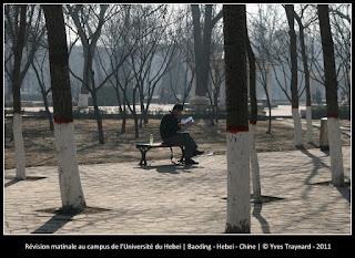 Révision matinale au campus de l'Université du Hebei | Baoding - Hebei - Chine | © Yves Traynard - 2011
