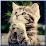 Vsevodnom1's profile photo