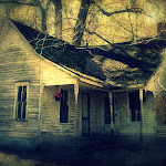 JaneCarlson-Makanda HouseSouthern Illinois.JPG