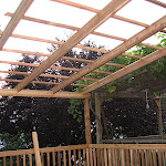 Windsor Terrace Brownstone Deck