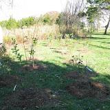 Hammo Planting - Shannon Schiesser - IMG_4965.JPG