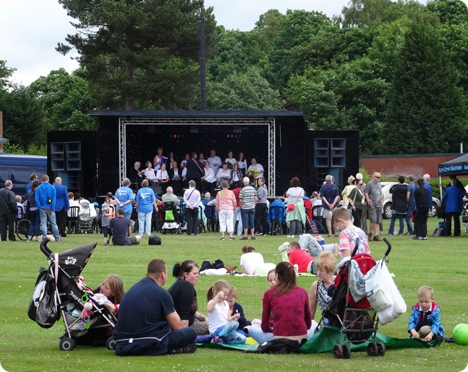 Picnic in the Park for the Armed Forces