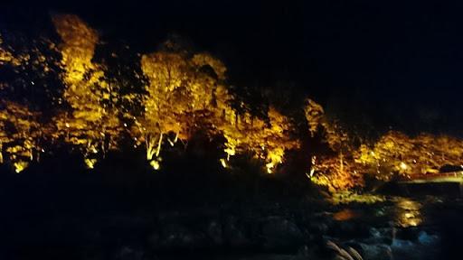 DSC 7641 thumb%255B2%255D - 【Vaperの休日】香嵐渓で秋の紅葉夜景を見てきてイノシシやシカ、刀削麺を食らう!それから車の試乗行ってきた【グルメレポート/マツダ CX-5】