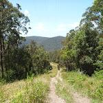 Trail west of Heaton Gap (359030)