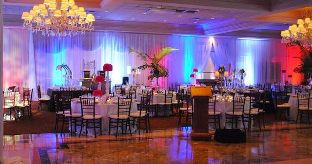Weddings - 544595_10151960528520145_1055047492_n.jpg
