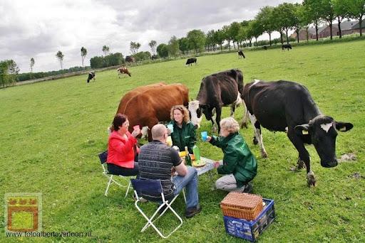 moederdagontbijt in het weiland overloon 13-05-2012 (17).JPG