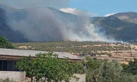 Αττική : Φωτιά τώρα σε δασική έκταση στα Μέγαρα κοντά στο πεδίο βολής